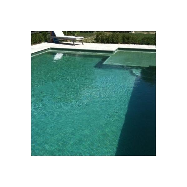 Mosaique piscine vert olive concept for Piscine concept lyon