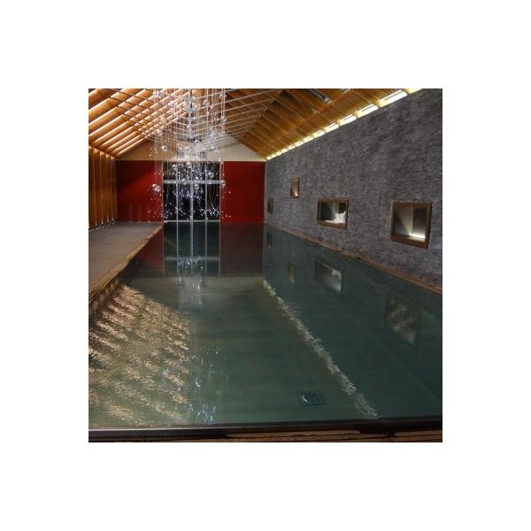 Majestueuse piscine d 39 int rieur en inox concept for Piscine concept lyon
