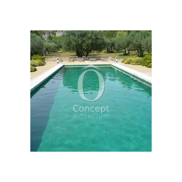 Carrelage vert sublime fonce concept for Piscine concept lyon