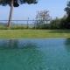 Couleur d'eau vert olive